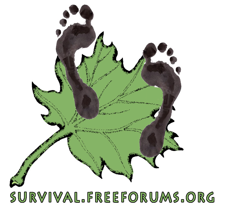Survival forum
